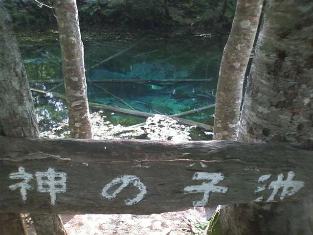 裏摩周  神の子池