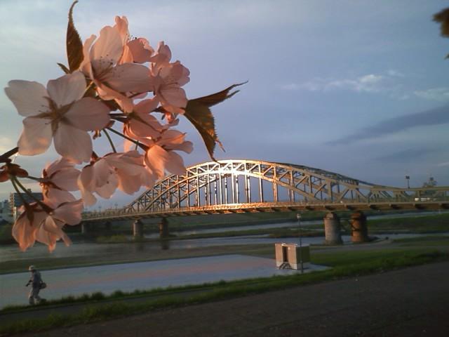黄金の旭橋