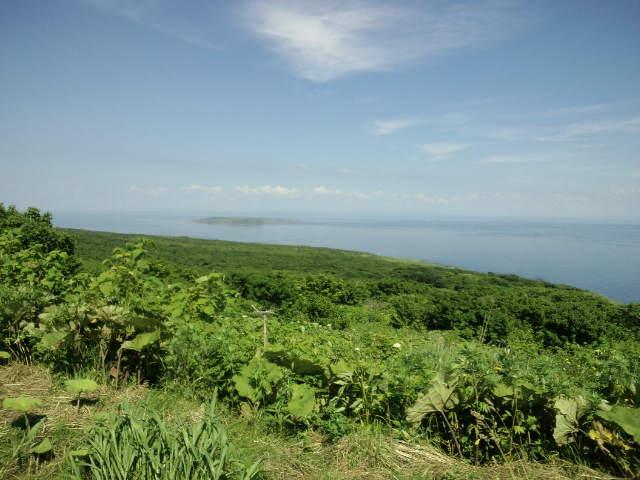 天売島フラリ旅⑥